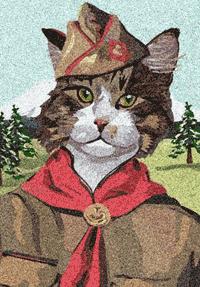 cat-scout